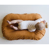 lifestyle_2, Snuggle Me 100% Organic Cotton Baby and Infant Lounger Set ember burnt orange