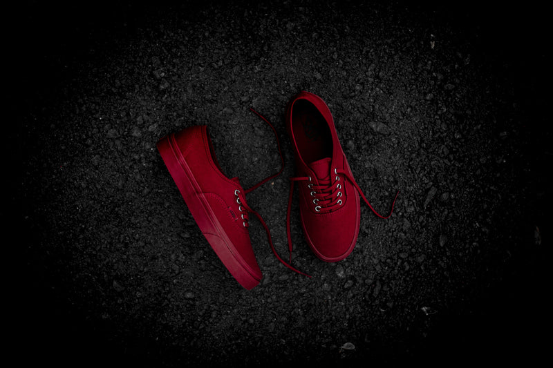 Vans Primary Mono Authentic (Red/Silver)