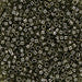 DBV123- 11/0 Transparent Olive Grey Luster Delica Beads-General Bead