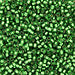 DBV688- 11/0 Semi Matte Silver Lined Kelly Green Delica Beads-General Bead