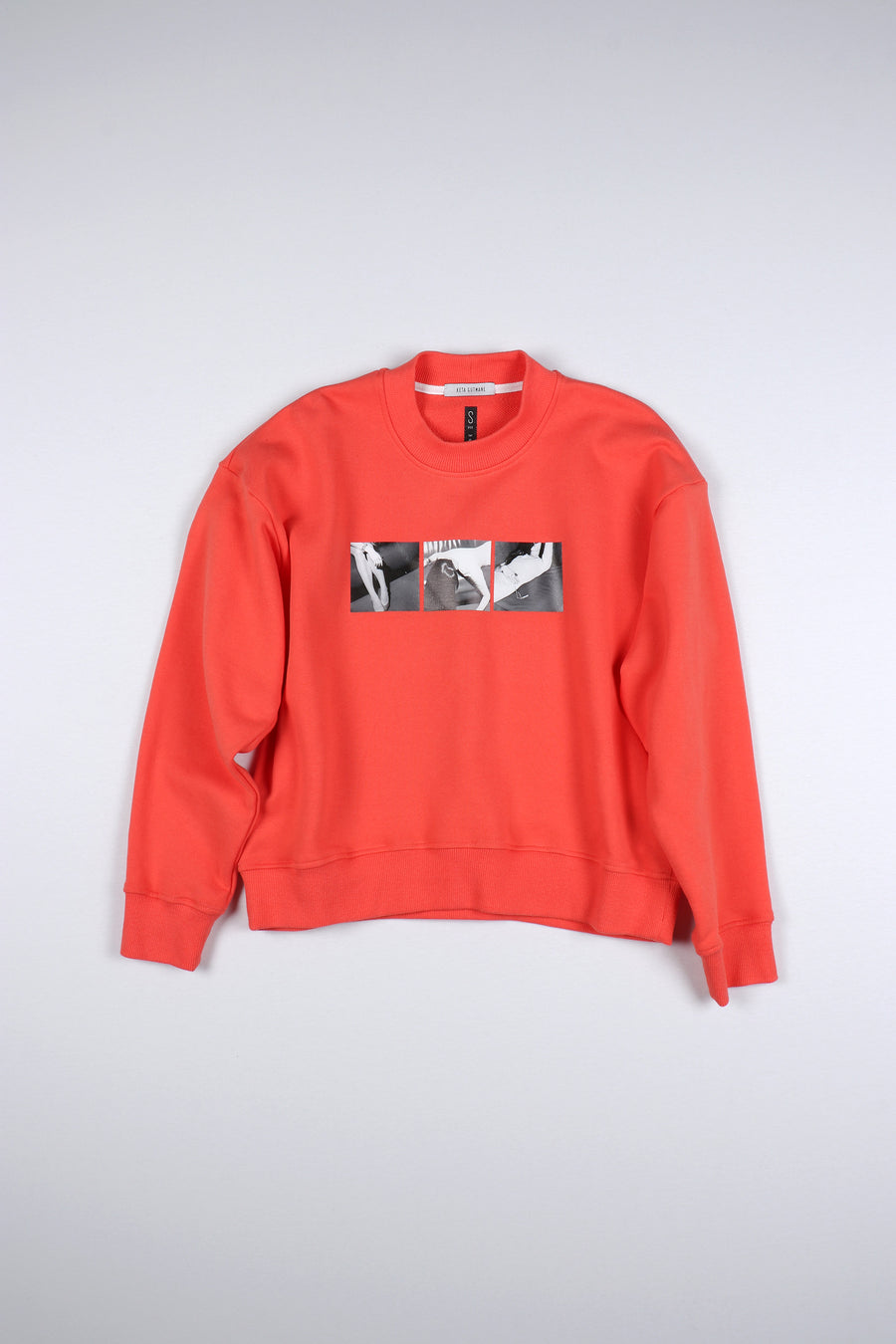 PINK/ORANGE PHOTO STORY SWEATSHIRT B&W