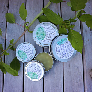 Jewelweed & Plantain Weed Salve - For Poison Ivy & more - 2 oz or 4 oz Tin