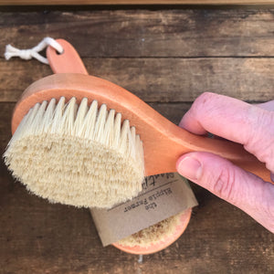 "Plant Bristled Brush - For Body or Dishes - 8"" Long"