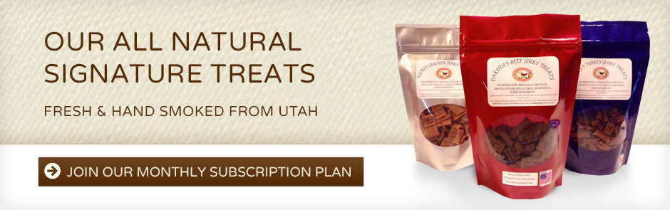 Join our monthly subscription plan!