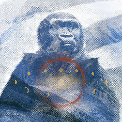 <em>Mountain gorilla</em> art print