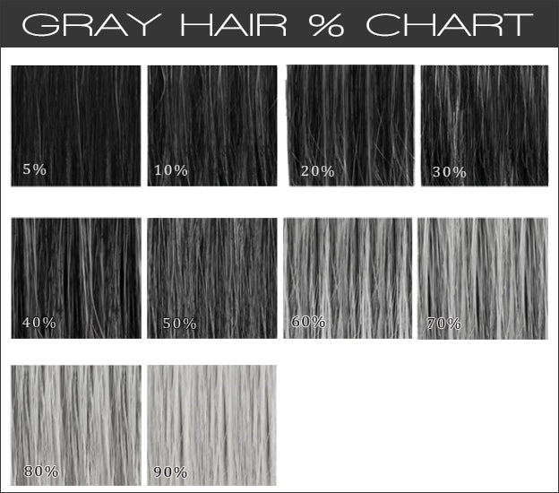 Gray Hair Wig Color Chart  Gracelacewigs