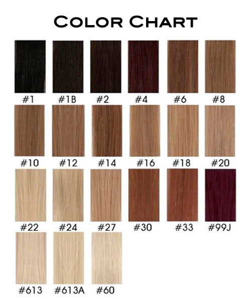 Human Hair Wig Hair Color Chart – Ruth's Beauty