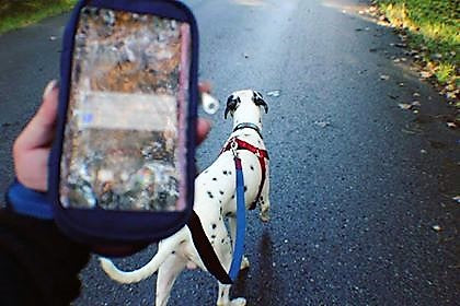No-Pockets Leash - Decorative leash with Waterproof Iphone Case
