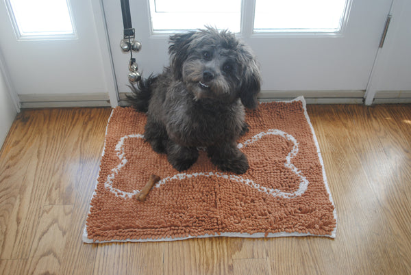 Small Caramel Brown Bone Absorbent Doormat