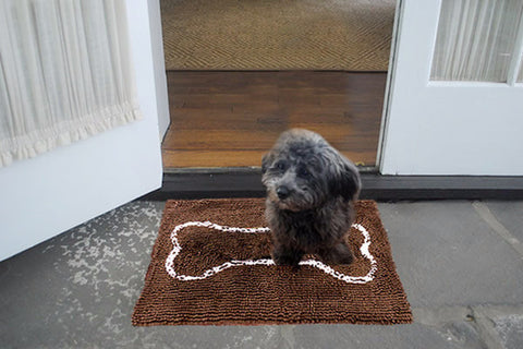 Small Chocolate Bone Absorbent Doormat