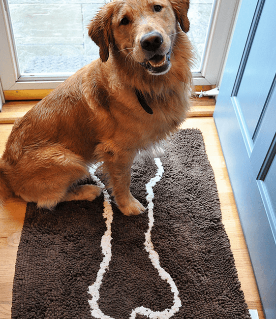 Absorbent Dog Doormat Absorbent Dog Towels Soggy Doggy