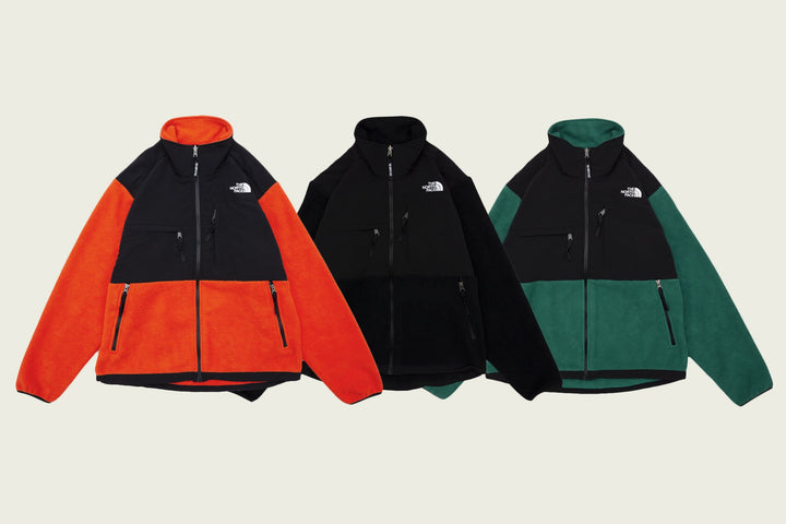 THE NORTH FACE FW20