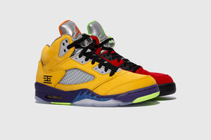 "AIR JORDAN 5 RETRO SE ""WHAT THE?"""
