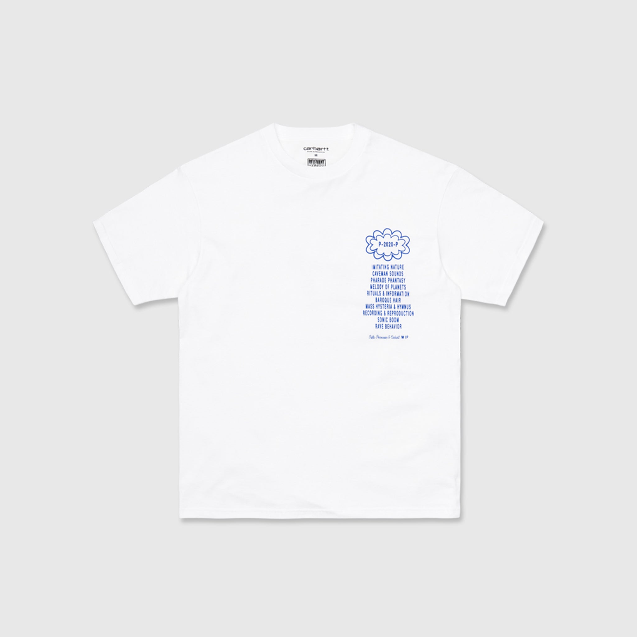 CARHARTT WIP X RELEVANT PARTIES PUBLIC POSSESSION S/S T-SHIRT