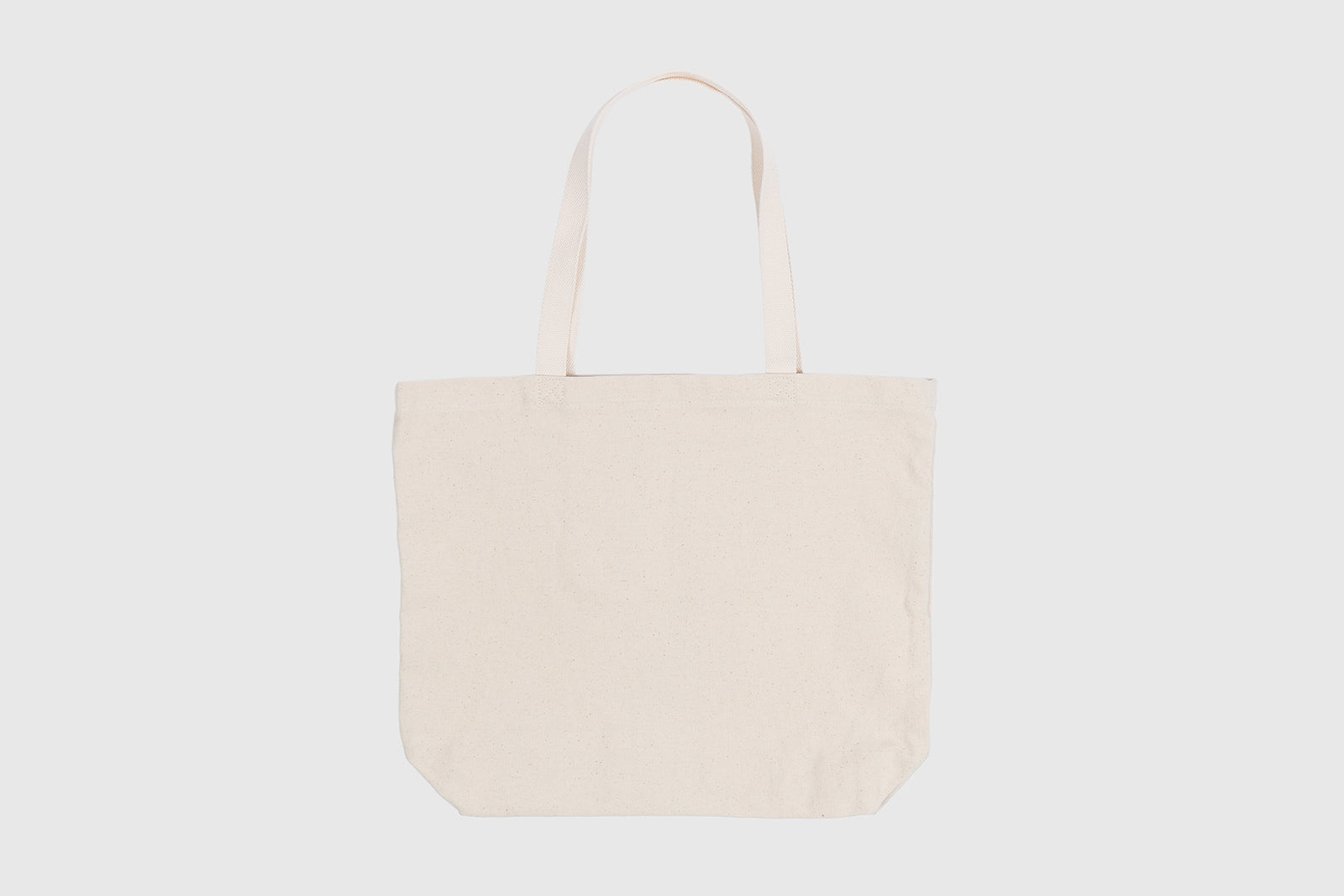 STUSSY DOUBLE MASK TOTE
