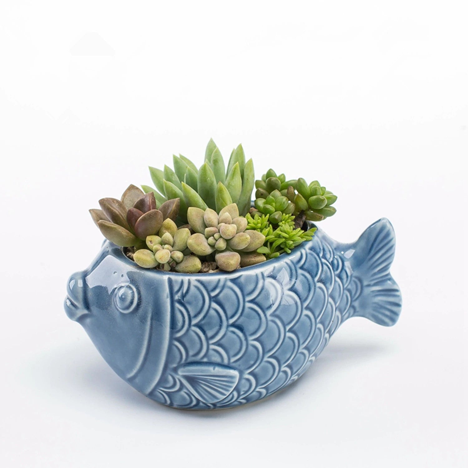 Ceramic Blue Fish Planter