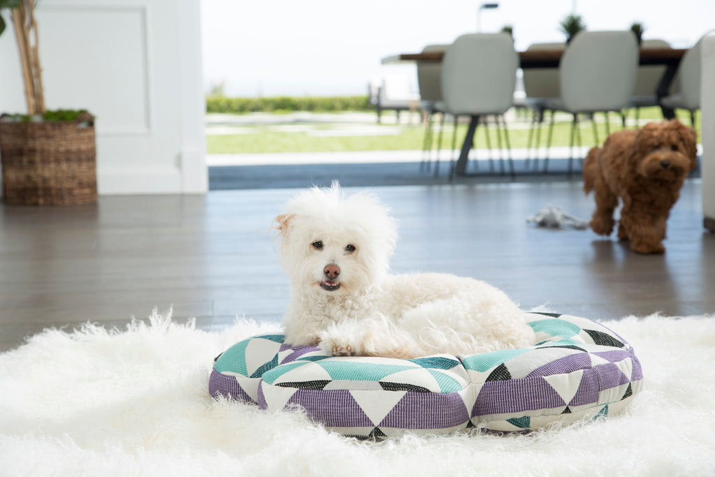 Round Pillow Dog Beds