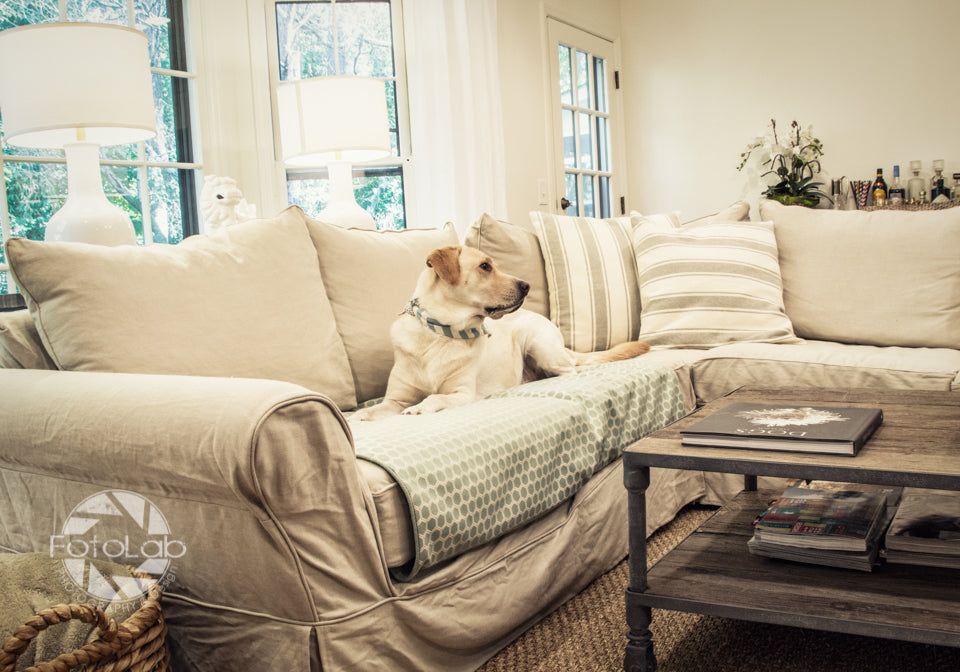 luxury furniture covers to protect from pet hair
