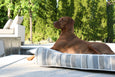 Contour Lounger Heather Grey Dog Bed
