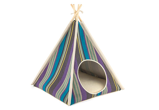 Boho Lake Dog Teepee