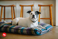 Seacoast Horizon Pillow Dog Bed