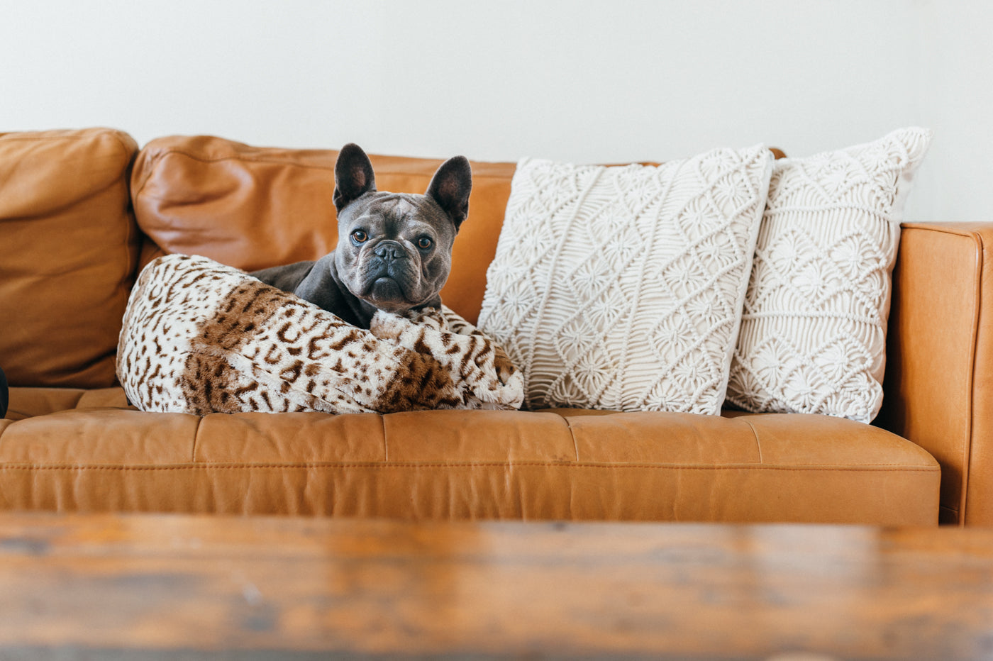 Leopard Brown Snuggle Bed