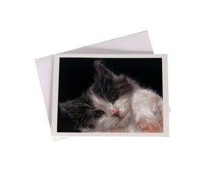 'Enzo, the Black and White Cat' Greetings Card