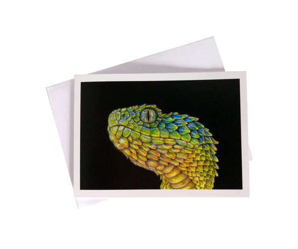 'Gahiji, the Atheris Squamigera Snake' Greetings Card