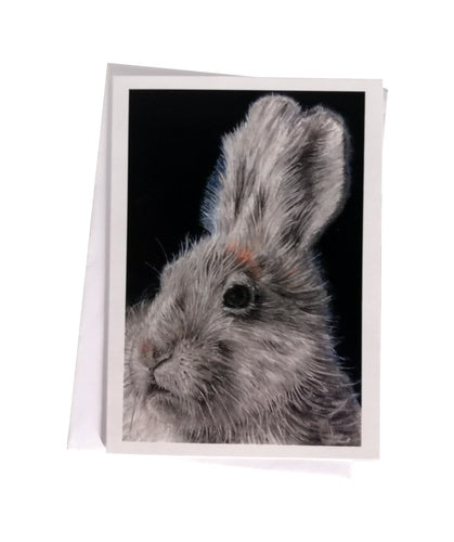 'Harper, the Arctic Hare' Greetings Card