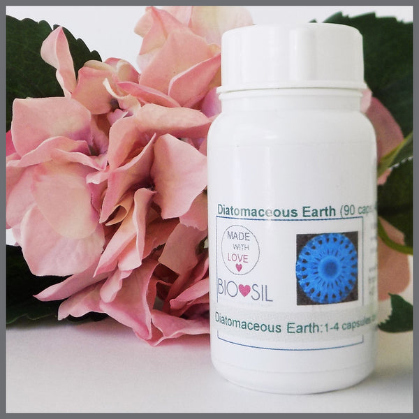 Diatomaceous Earth capsules (90) 480 mg - Bio-Sil South Africa - Wishing you abundant healthCapsulesBio-Sil - 1