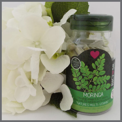 Moringa Super Food 90 vege-caps