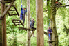 Beamish Wild High Ropes Experience