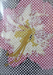 Checkerboard Hibiscus Greeting Card