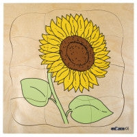 Growth puzzles - Sunflower, Tulip 9016583109