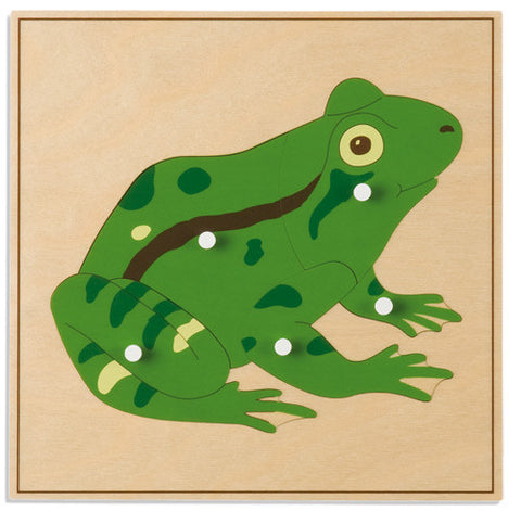 Animal Puzzle: Frog 590492996