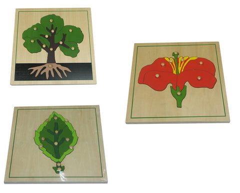 3 botany puzzles Leaf Tree Flower 135757675