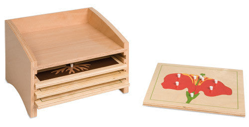 Botany Puzzle Cabinet: Four Compartments 613954884