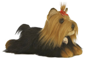 Miyoni by Aurora Yorkshire Terrier