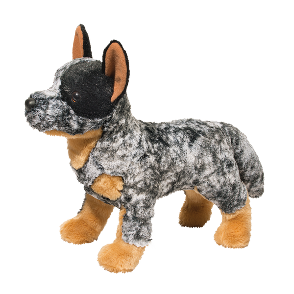 Douglas Bolt Australian Cattle Dog