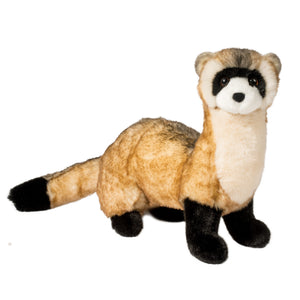 Douglas Vince Black Footed Ferret