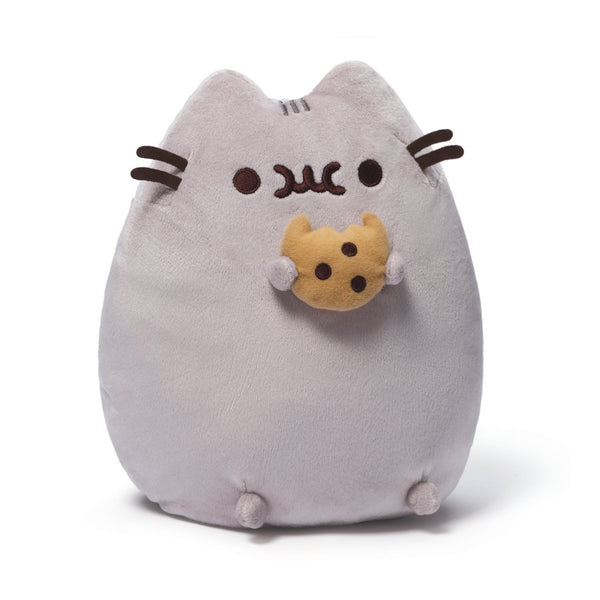 Pusheen with Cookie