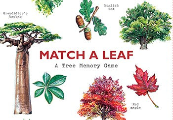 A Tree Memory Game: Match A Leaf