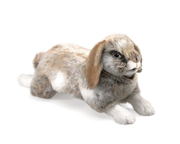 Folkmanis Holland Lop Rabbit