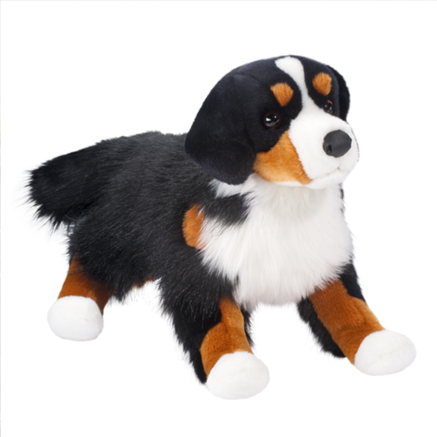 Douglas Alps Bernese Mountain Dog
