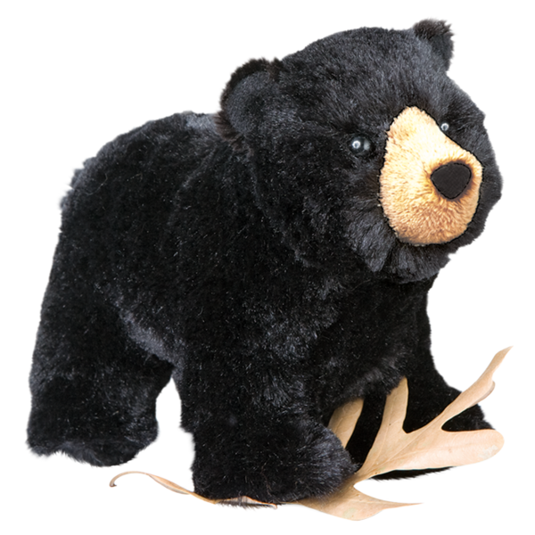 Douglas Morley Black Bear
