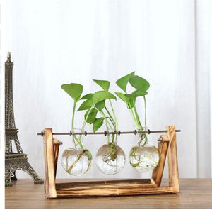 Small Glass Orb Vase in Wooden Stand