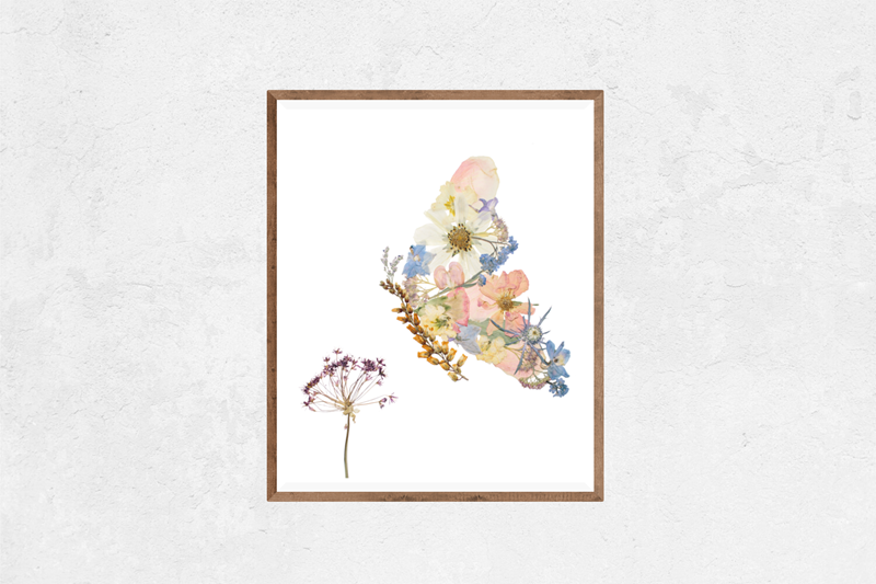 Peaceful Butterfly Floral Nature Art Print