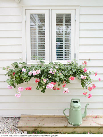 window box idea for small gardens