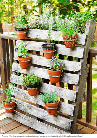 vertical garden made with an old wooden pallet
