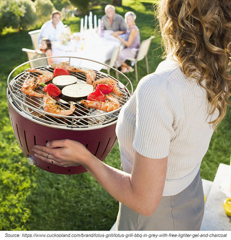 portable space saving travel bbq